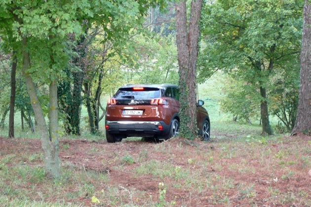 Peugeot 3008 Bronze Descending Hill