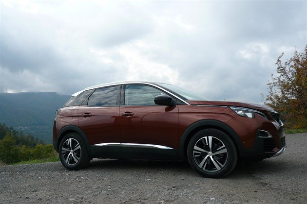 Peugeot 3008 Bronze Front Side Mountains