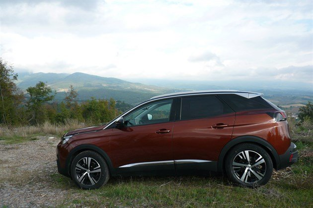 Peugeot 3008 Bronze Side Mountains